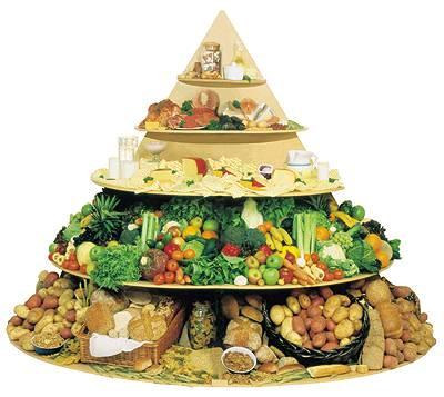 تغذيه درماني در بيماران ديابتي