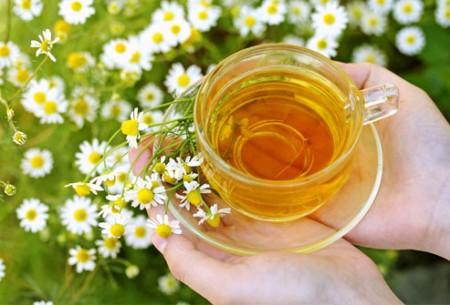 دیابت و مصرف چای بابونه