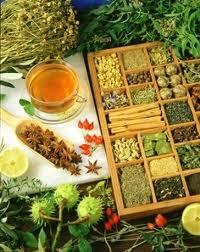 گیاهان مفید برای دیابت