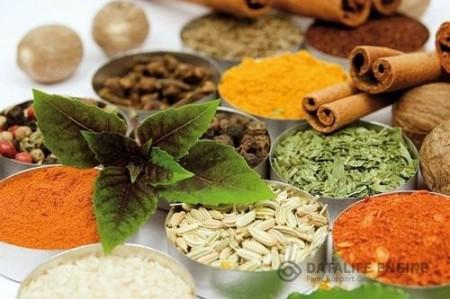 گیاهان شفا بخش برای درمان دیابت